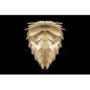 Conia lampa 40 cm, Borstad Mässing från Vita