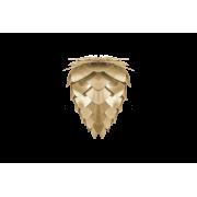 Conia mini lampa 30 cm, Borstad mässing från Vita