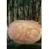 Dunlampa XL Ljusbrun (koppar), Eos från Vita